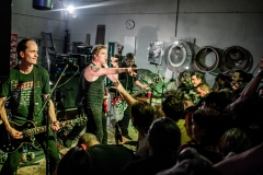 Die Toten Hosen Magical Mystery Tour in Darmstadt 19